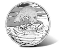Canadian 2016 Arctic Fox Wildlife Reflections Silver Proof Coin
