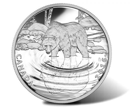 Canadian 2016 Grizzly Bear Wildlife Reflections Silver Proof Coin