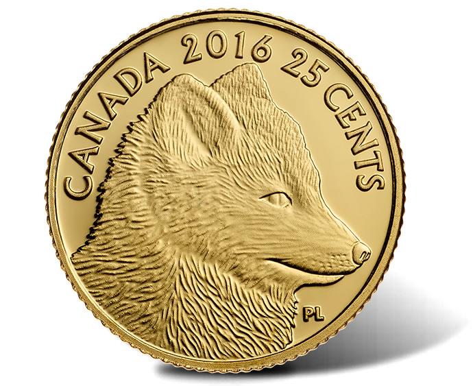 arctic coin news