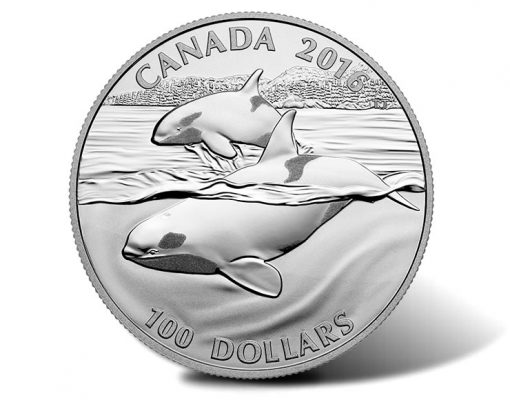 Canadian 2016 $100 Orca Silver Coin