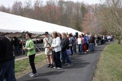 Line to Exchange for Cumberland Gap Quarters
