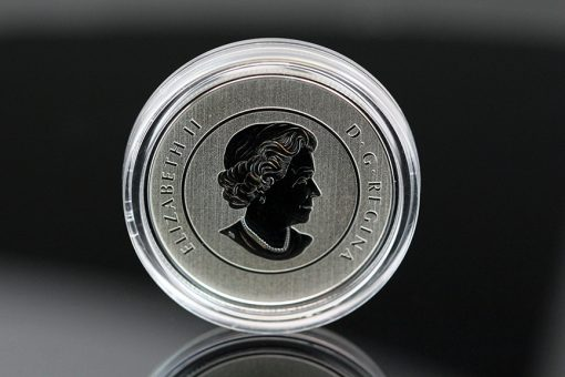 Canadian 2016 $25 True North Silver Coin, Obverse