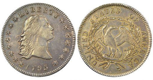 Double Plug 1795 Flowing Hair Silver Dollar