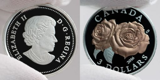 Photo of a Canadian 2016 $3 Queen Elizabeth Rose Silver Coin