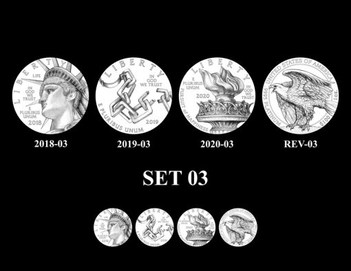 american-platinum-eagle-design-12-set-03