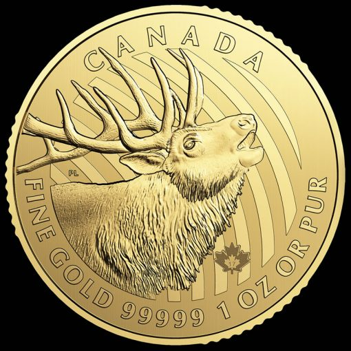 Call of the Wild Series 2017 $200 Canadian Elk 1 oz Gold Coin