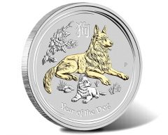 2018 Year of the Dog 1oz Silver Gilded Coin