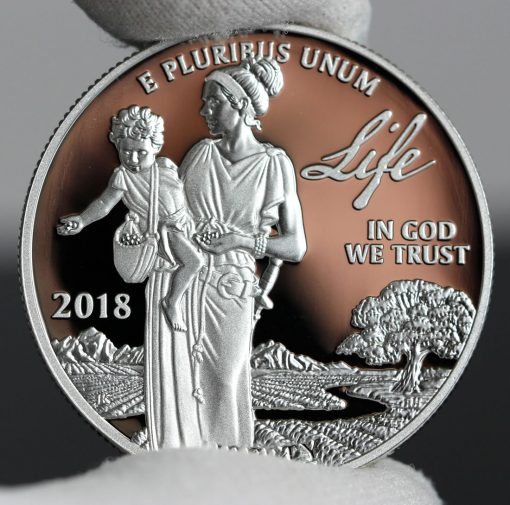 Photo of 2018-W Proof American Platinum Eagle - Obverse, Life-a