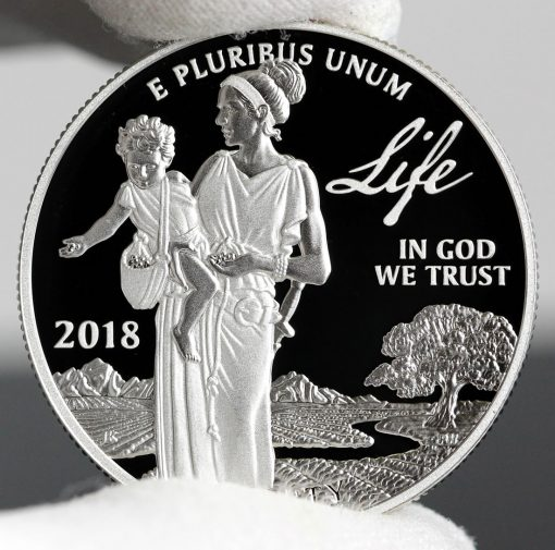 Photo of 2018-W Proof American Platinum Eagle - Obverse, Life-b