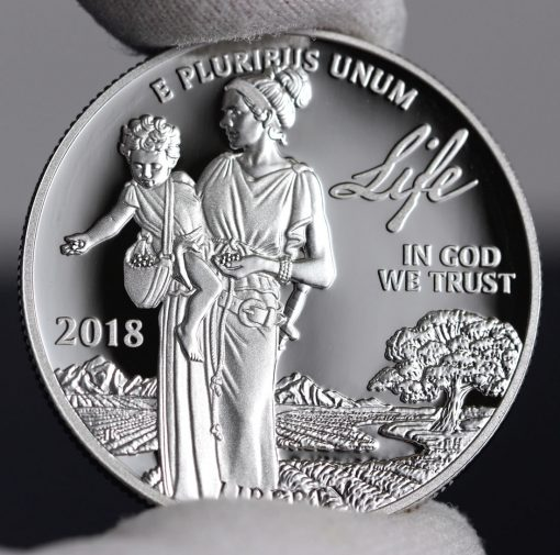 Photo of 2018-W Proof American Platinum Eagle - Obverse, Life-c