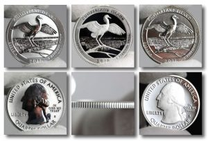 Cumberland Island National Seashore Quarter Photos