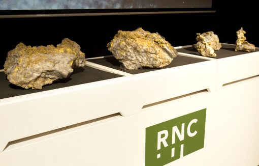 PMIS RNC Beta Hunt gold specimens