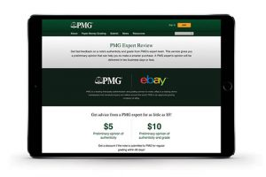 PMG Expert Review