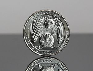 2020-D National Park of American Samoa Quarter